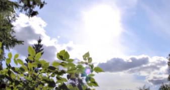 Погода в Острозі 23 липня