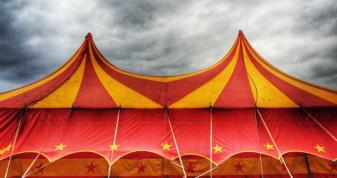 В Острог завітає цирк