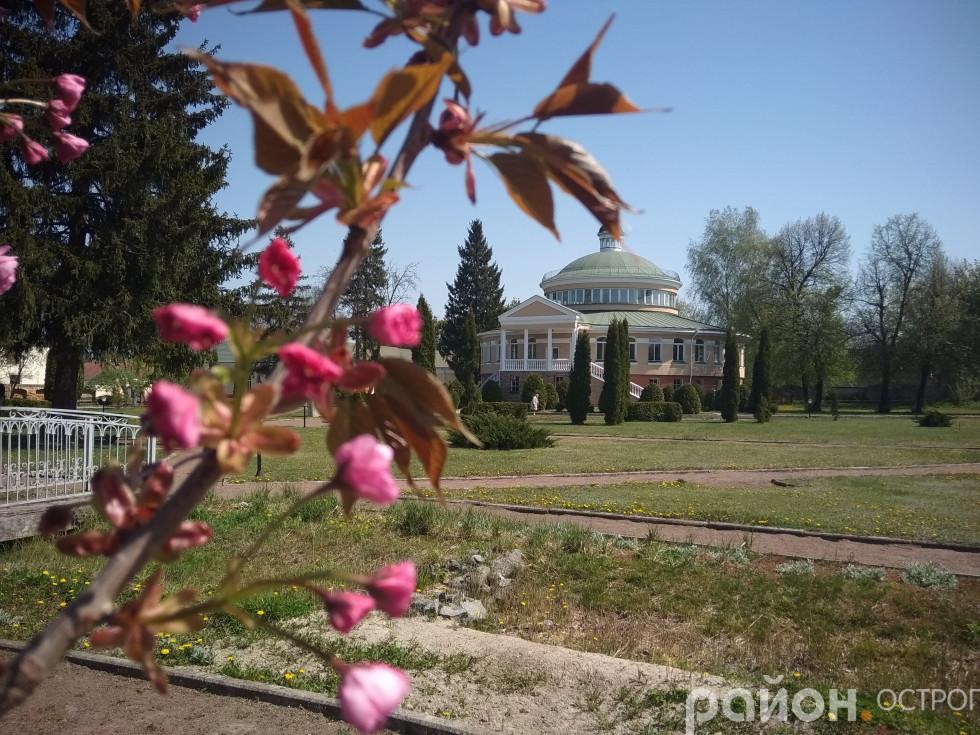 Академічний парк прикрашений ліхтариками квітів