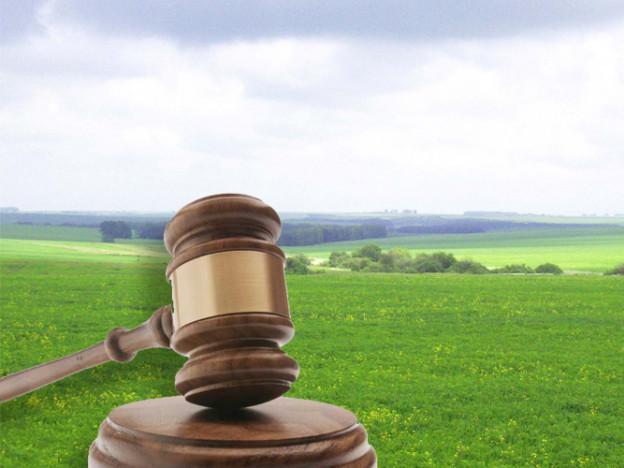 Як захистити права власності на землю