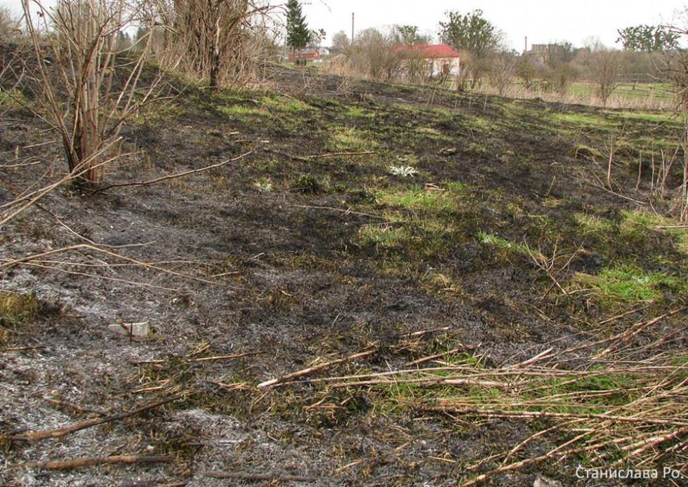 Результат спалювання трави у Новомалині