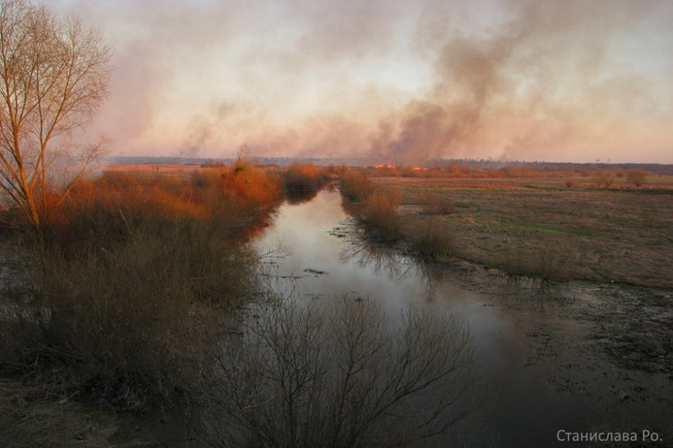 Луг в Острозі поблизу річки Гнилий ріг