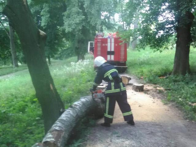 Небезпеку усували рятувальники