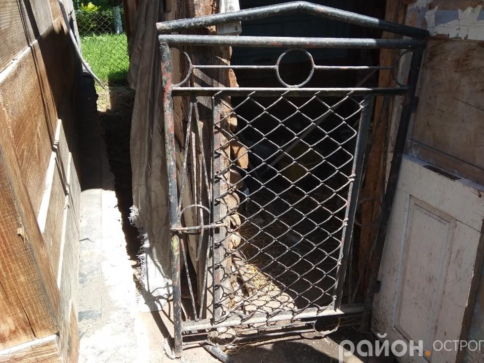 У господарстві Антоніни Ковш важка металева хвіртка в курник була відсунута