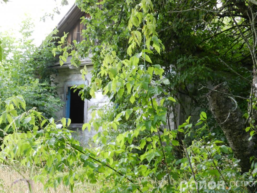 Покинуті будинки