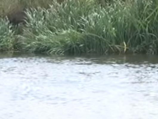 Річка Горинь