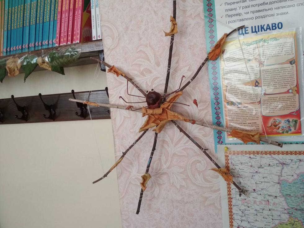 Павучок, якого ніхто не боїться
