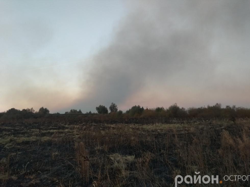 Частина лугу вже випалена раніше