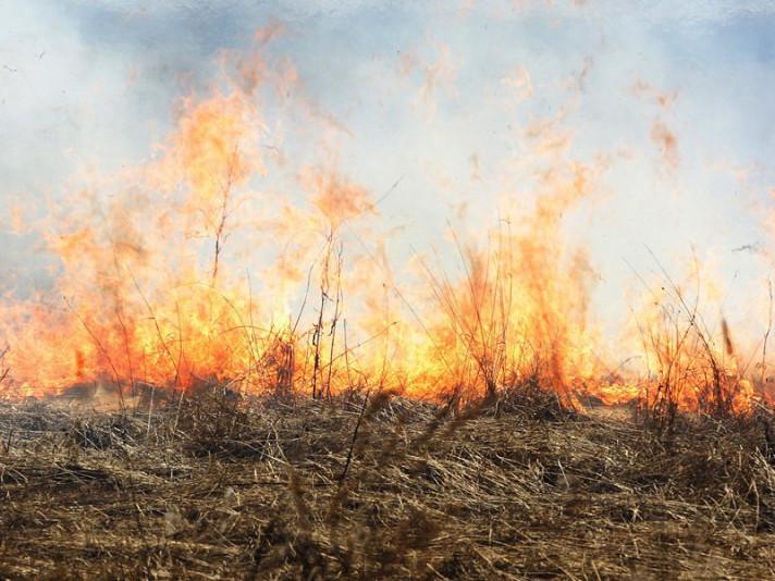 В Острозькому районі знову пожежа