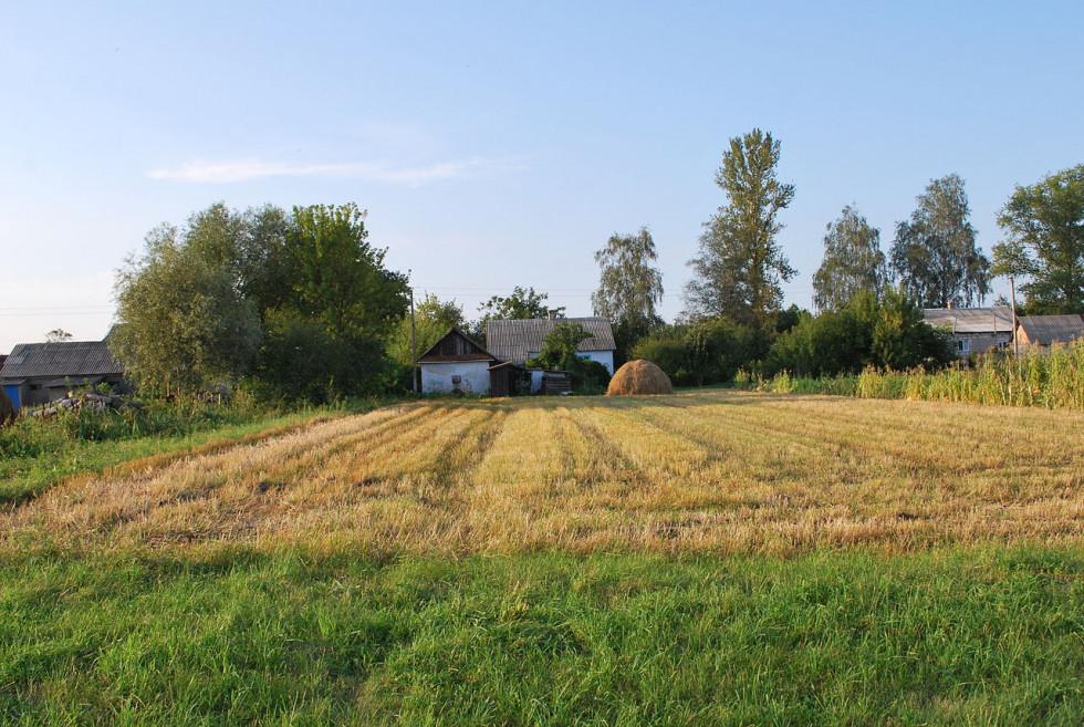 Домогосподарства в селі Вельбівно (фото ілюстративне)